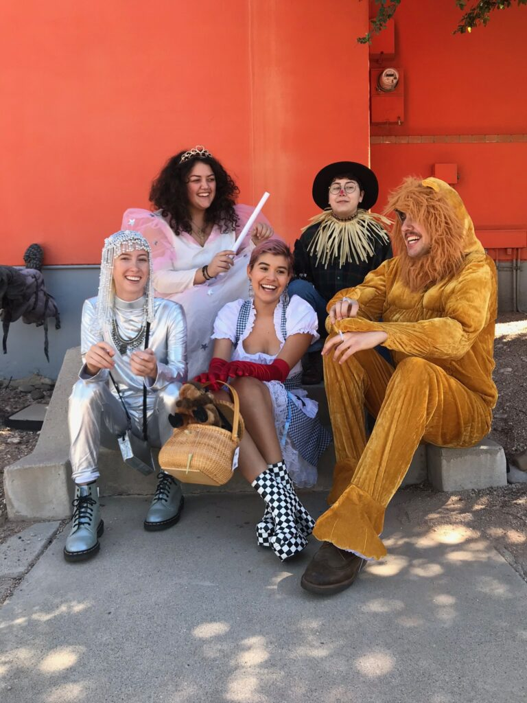 Wizard of Oz Group Costume, Glenda the Good WItch, Tin Man, Scarecrow, Cowardly Lion, Dorothy, Costumes for Halloween 2020
